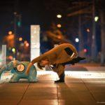 「象と」ダンサー 上田舞香 copyright Natsko Goto/Minato City Ballet Company